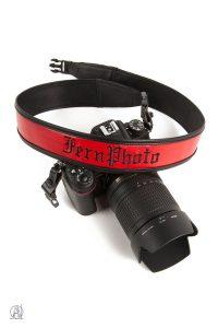 Fern Photo